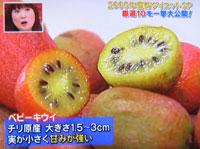 サプライズ 朝キウイダイエット